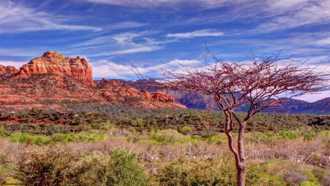 Steps to recovery homes recovery house cottonwood, recovery house sedona , recovery home cottonwood, recovery home Sedona.